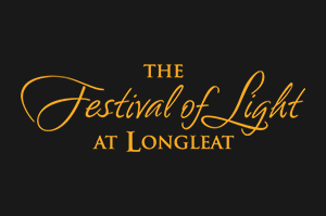 Need Festival of Light?